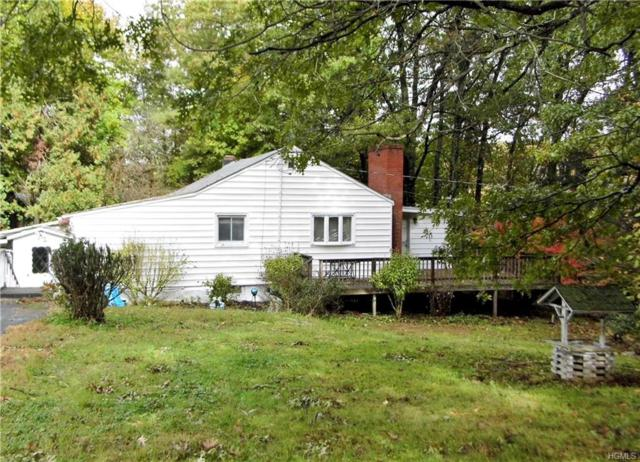 54 Meusel Road, Pine Plains, NY 12567 (MLS #4849377) :: William Raveis Legends Realty Group