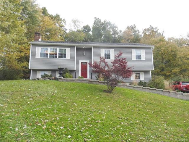 16 Macintosh Lane, Wappingers Falls, NY 12590 (MLS #4849990) :: Mark Seiden Real Estate Team