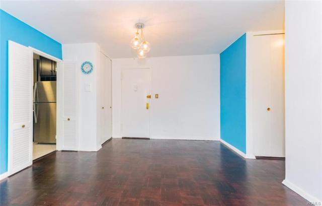 3935 Blackstone Avenue 3D, Bronx, NY 10471 (MLS #4850229) :: William Raveis Legends Realty Group