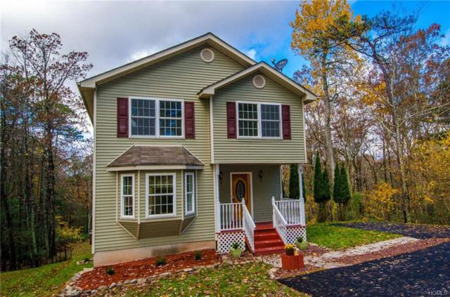 8 Willow Lane, Glen Spey, NY 12737 (MLS #4850375) :: William Raveis Legends Realty Group