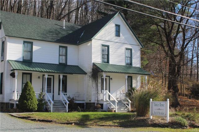 2012 Old Route 17, Roscoe, NY 12776 (MLS #4851367) :: Mark Seiden Real Estate Team