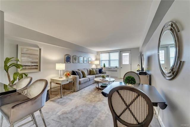 50 Barker Street #734, Mount Kisco, NY 10549 (MLS #4851950) :: Mark Boyland Real Estate Team