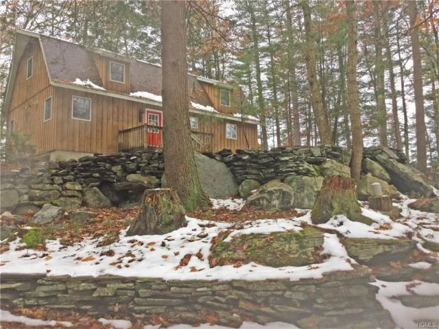 3179 State Route 97, Barryville, NY 12719 (MLS #4854384) :: Stevens Realty Group