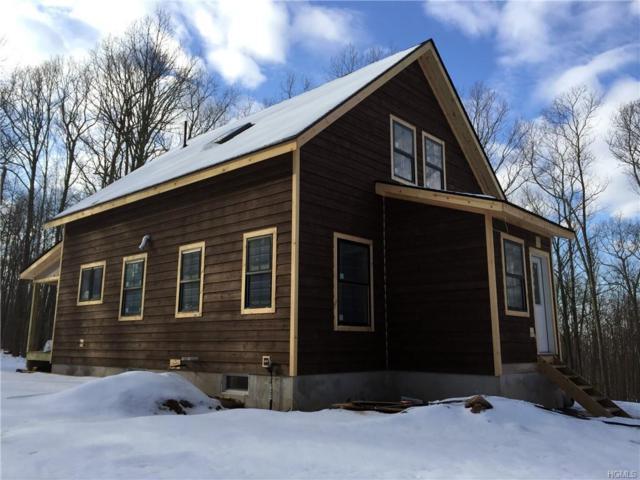 328 Evergreen Lane, Narrowsburg, NY 12764 (MLS #4855609) :: Mark Boyland Real Estate Team