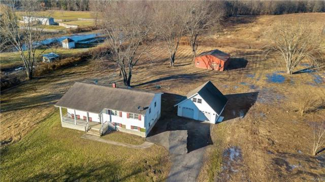 217 Springtown Road, New Paltz, NY 12561 (MLS #4855763) :: Shares of New York