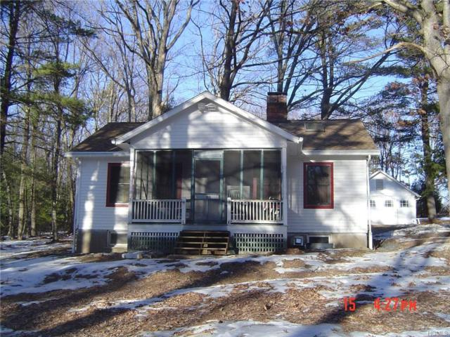195 Lakeview Drive Road, Highland Lake, NY 12743 (MLS #4856349) :: Stevens Realty Group