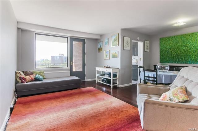 4705 Henry Hudson Parkway W 15K, Bronx, NY 10471 (MLS #4900722) :: Mark Boyland Real Estate Team