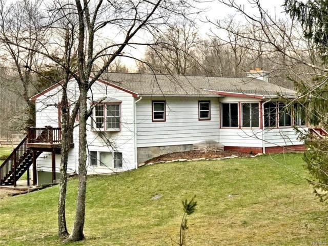 719 Pumpkin Lane, Clinton Corners, NY 12514 (MLS #4901103) :: Mark Seiden Real Estate Team