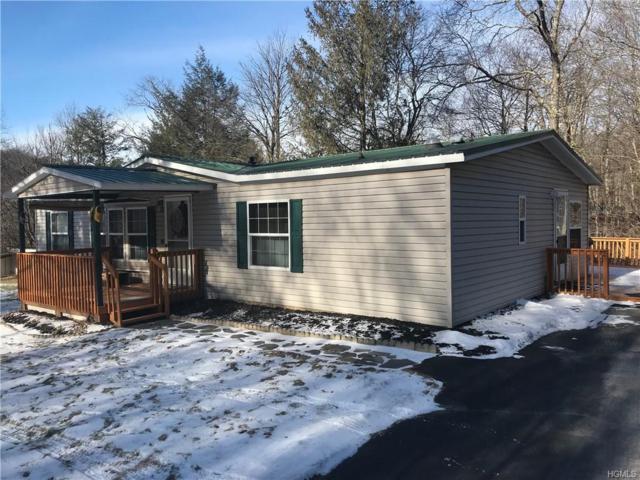 6 Cross Road, Livingston Manor, NY 12758 (MLS #4902272) :: Mark Boyland Real Estate Team