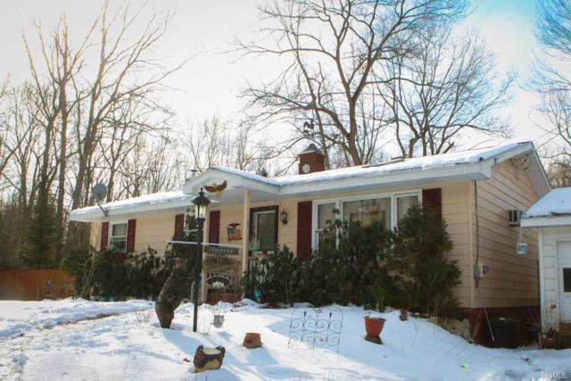 7083 Nys Route 97, Narrowsburg, NY 12764 (MLS #4902709) :: Mark Boyland Real Estate Team