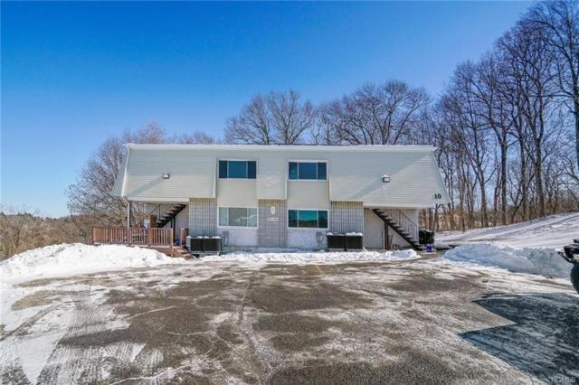1002 Mcintosh Place, Newburgh, NY 12550 (MLS #4903771) :: William Raveis Baer & McIntosh