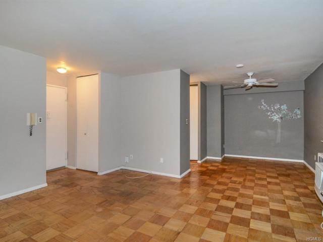 315 W 232 Street 5K, Bronx, NY 10463 (MLS #4904068) :: Mark Boyland Real Estate Team