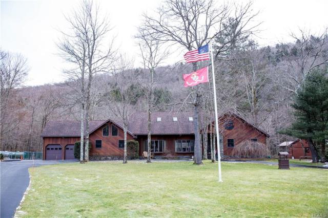 703 Hazel Road, Roscoe, NY 12758 (MLS #4904636) :: Mark Boyland Real Estate Team