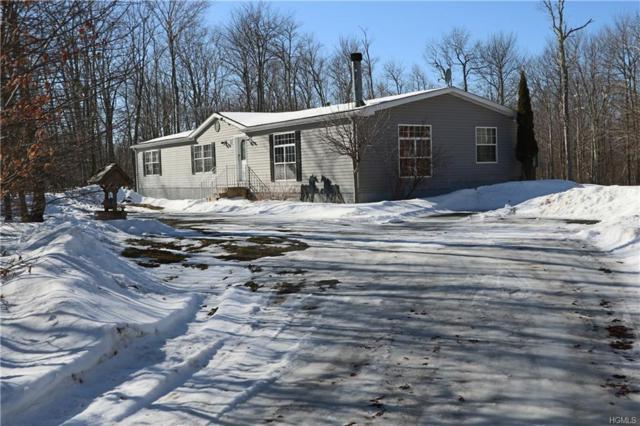 536 Fox Mountain Road, Livingston Manor, NY 12758 (MLS #4904815) :: Mark Boyland Real Estate Team