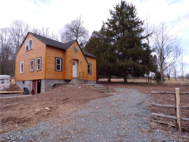 277 Miller Road, Callicoon, NY 12723 (MLS #4909005) :: William Raveis Legends Realty Group