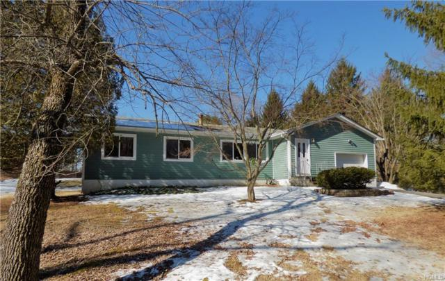 164 Gibson Hill Road, Chester, NY 10918 (MLS #4909321) :: Stevens Realty Group