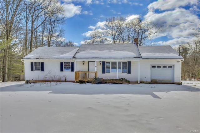 183 Dill Road, Forestburgh, NY 12777 (MLS #4909958) :: William Raveis Legends Realty Group