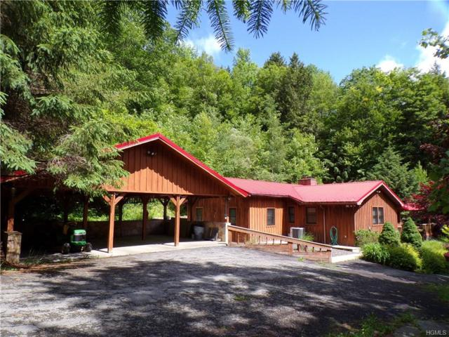 161 Readburn Road, East Branch, NY 13756 (MLS #4911691) :: William Raveis Legends Realty Group