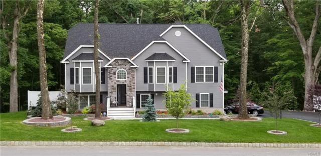 19 Finley Drive, New Windsor, NY 12577 (MLS #4912619) :: Shares of New York