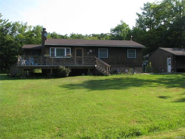 572 Hunter Lake Road, Parksville, NY 12768 (MLS #4914424) :: William Raveis Legends Realty Group