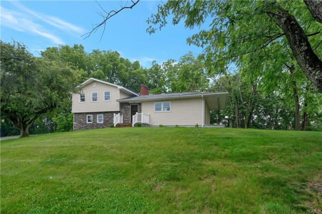 15 Volino Drive, Poughkeepsie, NY 12603 (MLS #4914552) :: William Raveis Legends Realty Group
