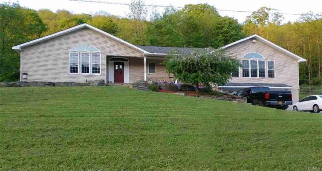 261 Gulf Road, Roscoe, NY 12776 (MLS #4914717) :: Mark Seiden Real Estate Team