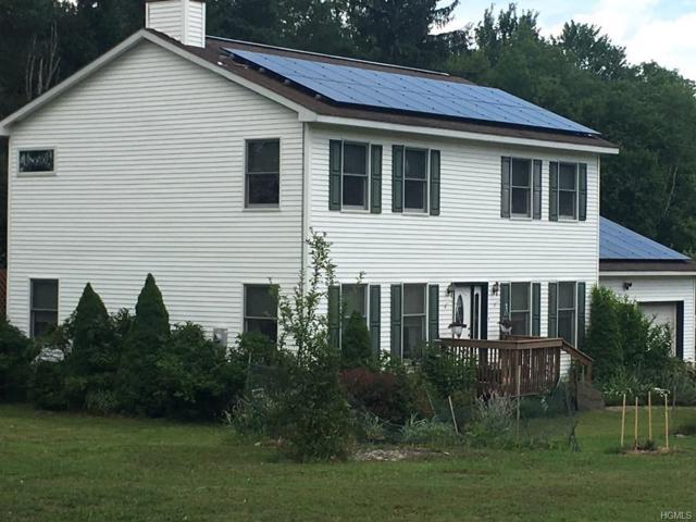 335 Big Hollow Road, Grahamsville, NY 12740 (MLS #4914945) :: Mark Seiden Real Estate Team