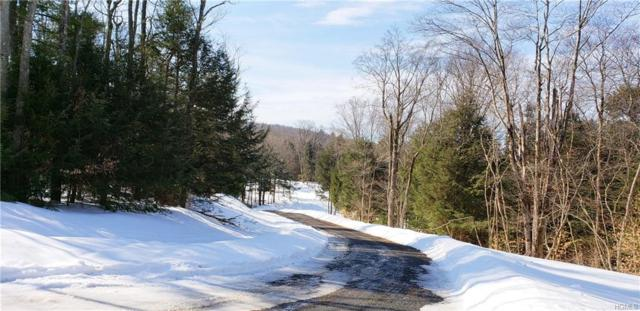 36 Cold Creek Pass E, Parksville, NY 12768 (MLS #4915147) :: Mark Seiden Real Estate Team