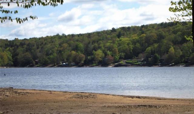 4.4 Woodstone Trail, Bethel, NY 12720 (MLS #4915333) :: The McGovern Caplicki Team