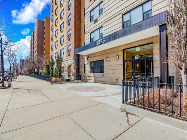 1275 Grant Avenue 3H, Bronx, NY 10456 (MLS #4916377) :: William Raveis Legends Realty Group