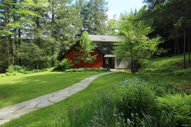 5 Gavette Road, Roscoe, NY 12776 (MLS #4916984) :: William Raveis Legends Realty Group