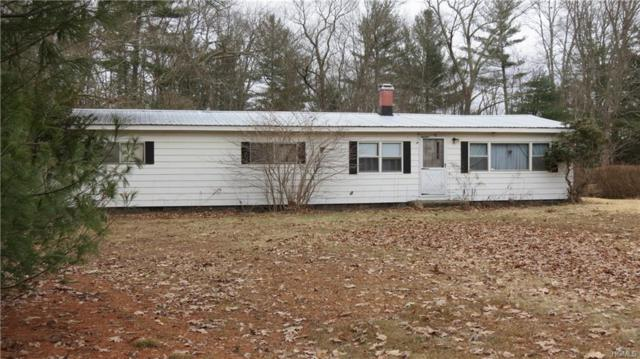 6092 Nys Route 97, Narrowsburg, NY 12764 (MLS #4917457) :: William Raveis Legends Realty Group