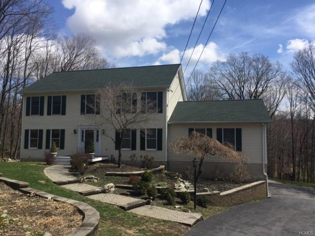 10 Booth Road, Chester, NY 10918 (MLS #4920106) :: William Raveis Legends Realty Group
