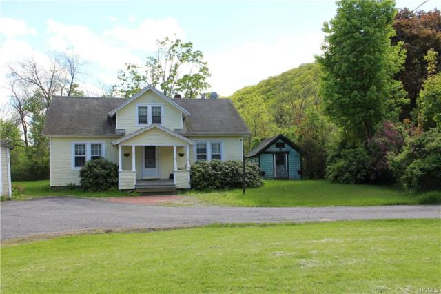8 Steelworks Circle, Wassaic, NY 12592 (MLS #4921762) :: The Anthony G Team