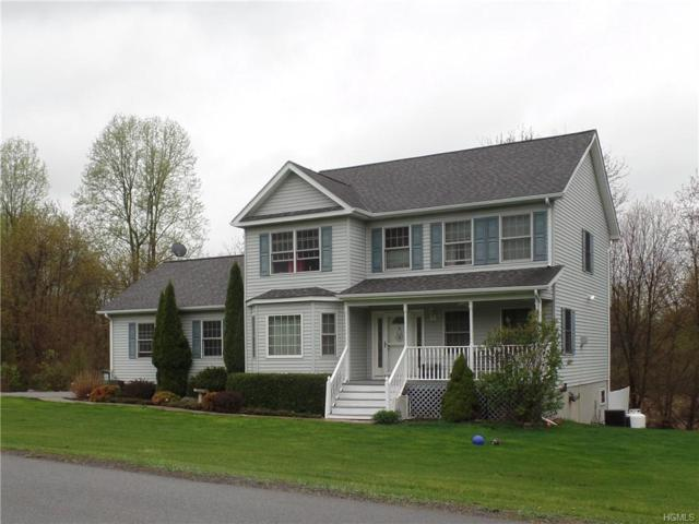 44 Country Knolls Road, Clintondale, NY 12515 (MLS #4922951) :: William Raveis Legends Realty Group