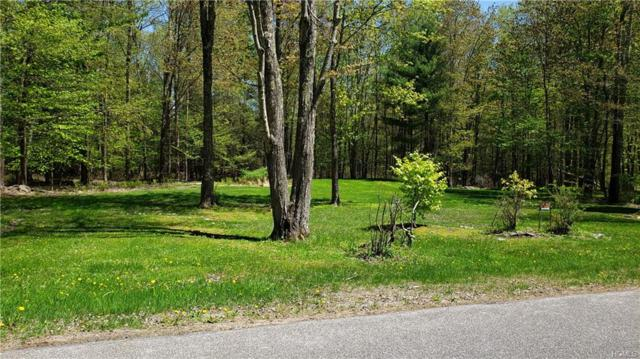 Smith Lane, Grahamsville, NY 12740 (MLS #4922999) :: William Raveis Legends Realty Group