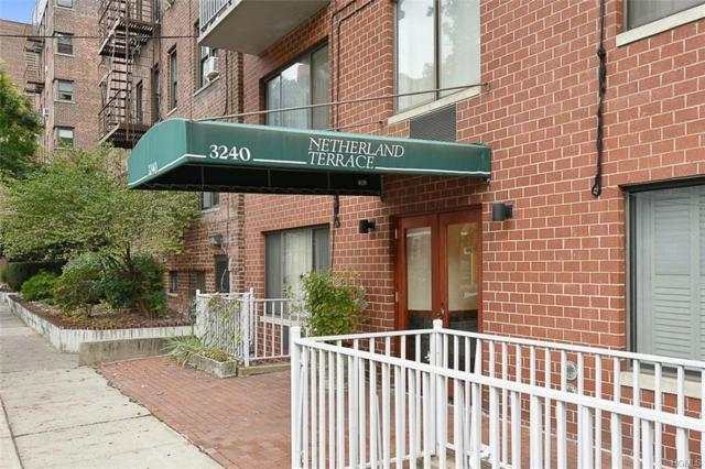 3240 Netherland Avenue 6B, Bronx, NY 10463 (MLS #4925014) :: William Raveis Legends Realty Group
