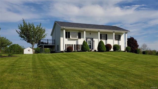 66 White Bridge Road, Middletown, NY 10940 (MLS #4928328) :: Mark Seiden Real Estate Team
