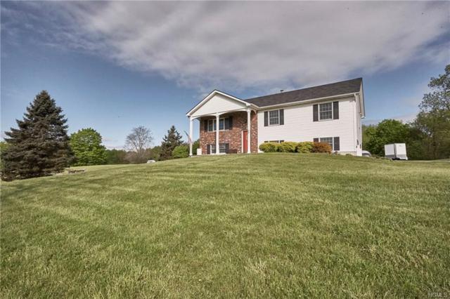99 Neelytown Road, Campbell Hall, NY 10916 (MLS #4931320) :: Mark Boyland Real Estate Team