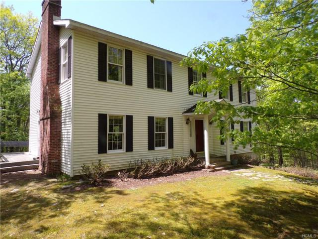 383 Evergreen Lane, Narrowsburg, NY 12764 (MLS #4932552) :: Mark Boyland Real Estate Team