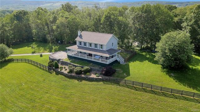 146 Mill Pond Road, Otisville, NY 10963 (MLS #4933426) :: William Raveis Baer & McIntosh