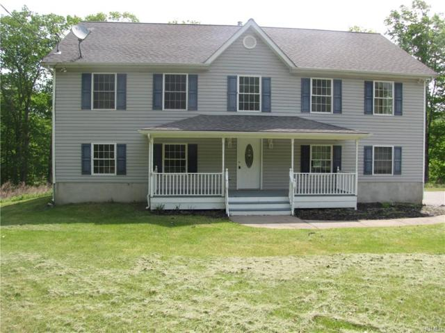 180 Penaluna Road, Monroe, NY 10950 (MLS #4937440) :: Mark Boyland Real Estate Team