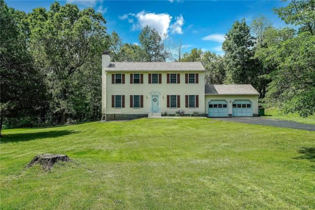 17 Farm View Road, Wappingers Falls, NY 12590 (MLS #4939901) :: William Raveis Legends Realty Group