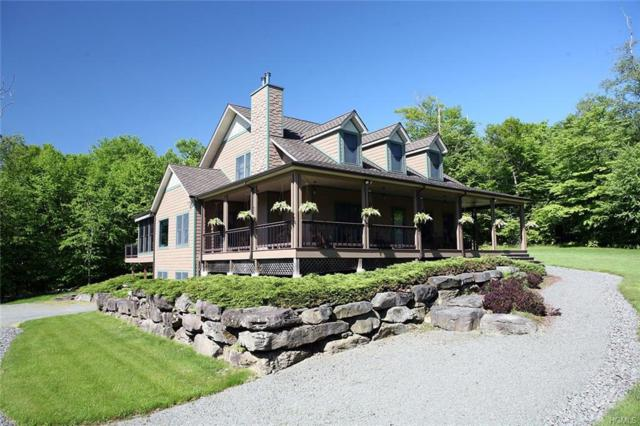 152 Heights Road, Equinunk, PA 18417 (MLS #4941788) :: The McGovern Caplicki Team