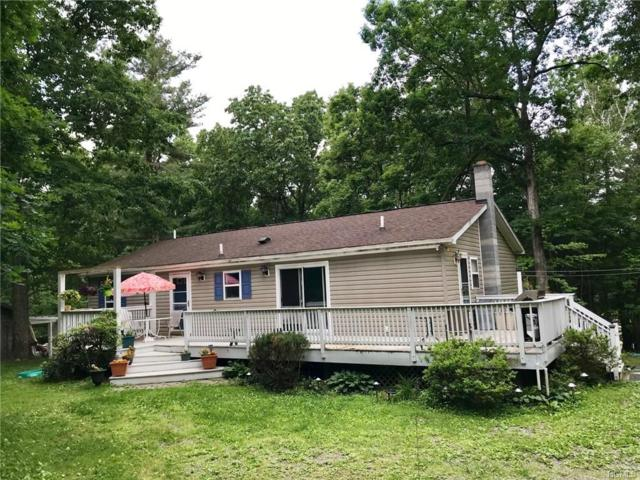 25 Maple Lane, Red Hook, NY 12571 (MLS #4945268) :: William Raveis Legends Realty Group