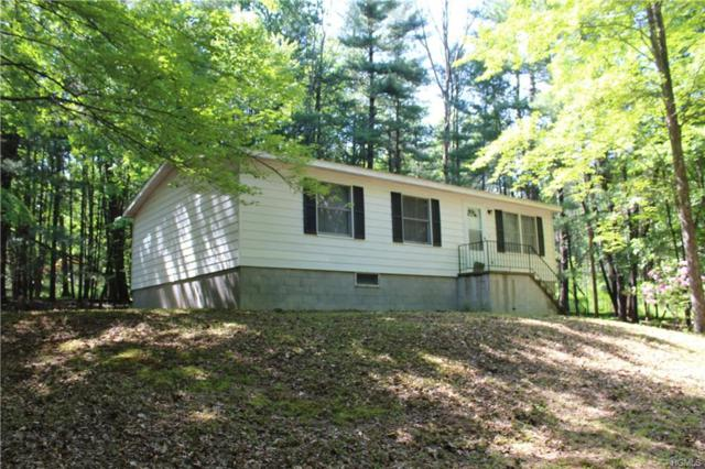 3573 State Route 28A, West Shokan, NY 12494 (MLS #4947236) :: Mark Boyland Real Estate Team