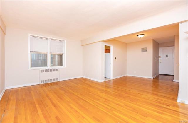 5620 Netherland 2B, Bronx, NY 10471 (MLS #4947938) :: Shares of New York