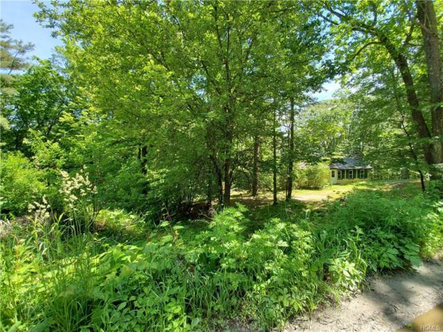 459 Shawanga Lodge Road, Bloomingburg, NY 12721 (MLS #4950822) :: William Raveis Legends Realty Group