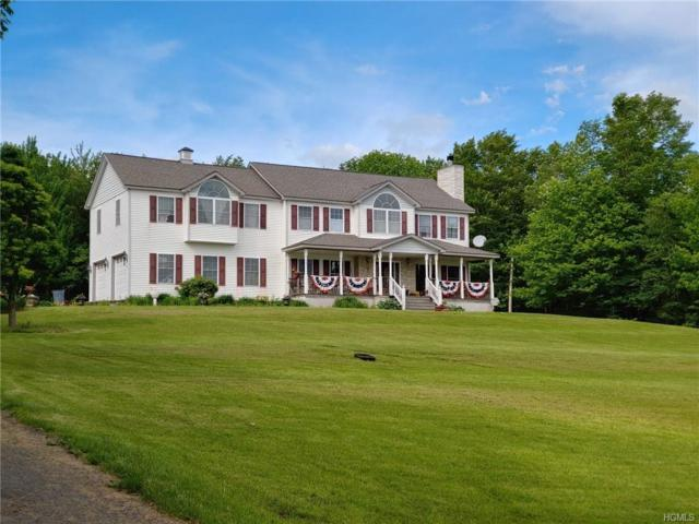 43 Kortright Road, Liberty, NY 12754 (MLS #4951712) :: William Raveis Legends Realty Group