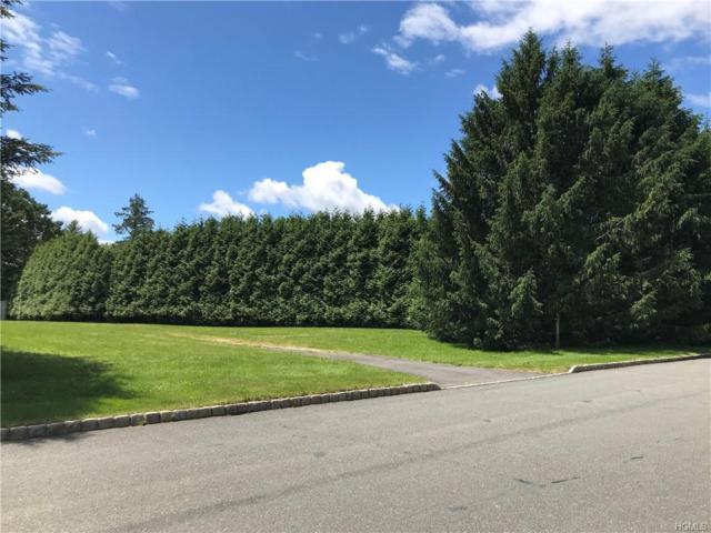 4 Sherwood Lane, Orangeburg, NY 10965 (MLS #4956525) :: William Raveis Baer & McIntosh